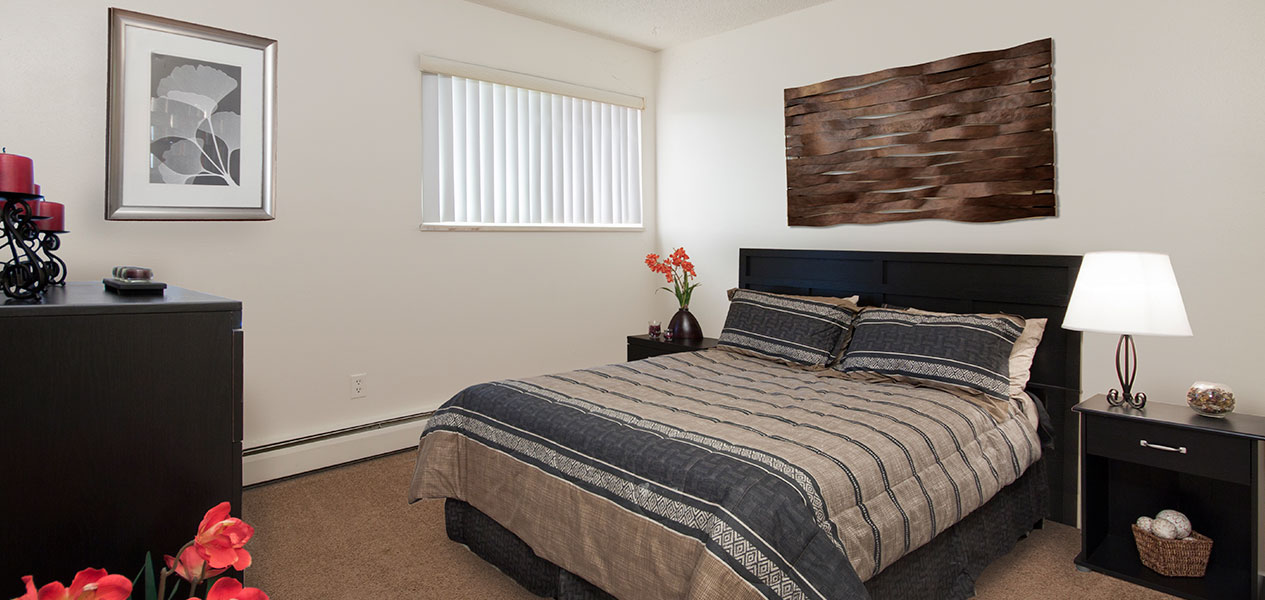1 Bedroom Colorado Springs Apartments For Rent | Paloma ...